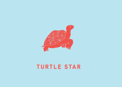 turtle_star_logo